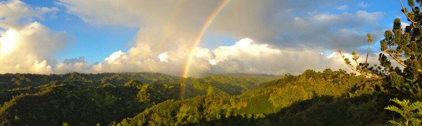 http://www.northshoreecotours.com/wp-content/uploads/2015/07/rsz_rainbow6.jpg